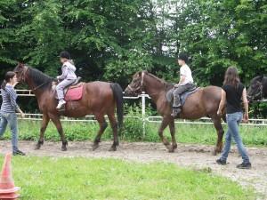 Konie w Czardworku 05